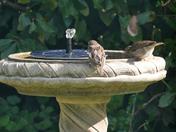 New solar fountain