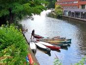 Norwich canoes