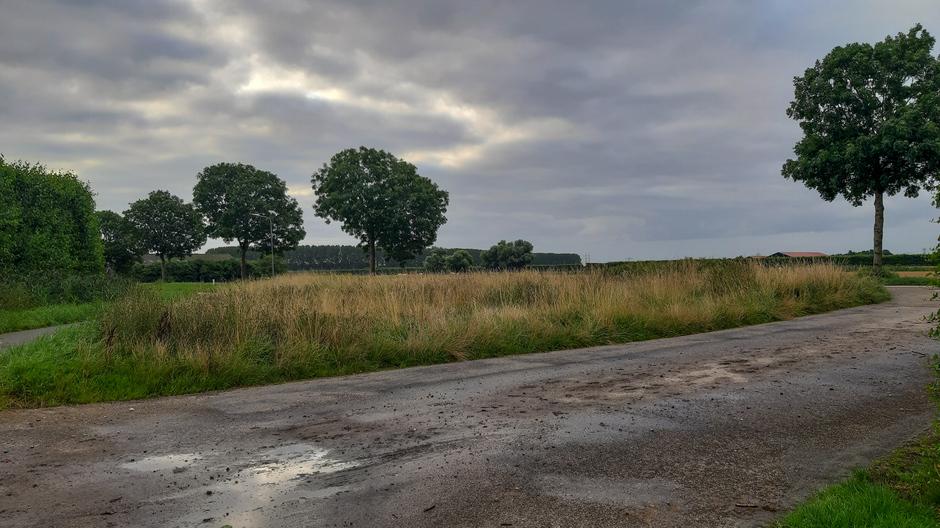 Bewolkt in de polder met af en toe zon