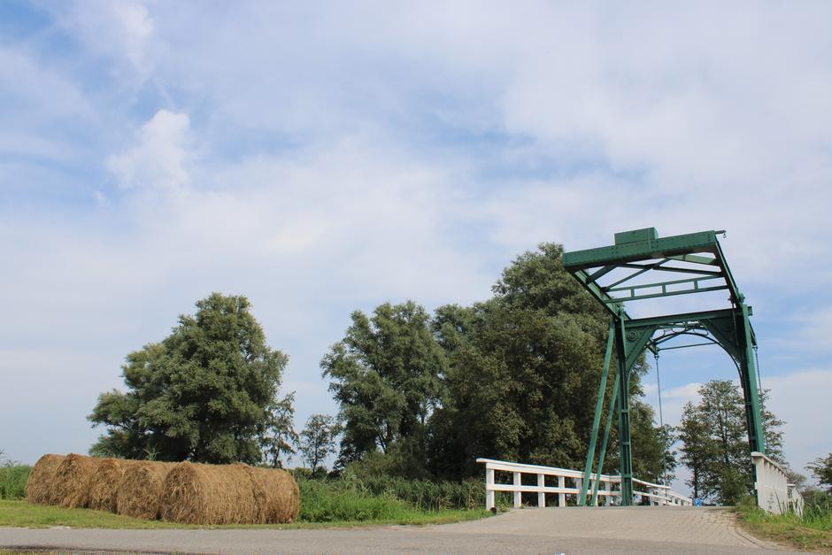 Hooirollen bij de brug