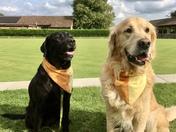 Jess and Murphy - Bredfield Bowls Club mascots