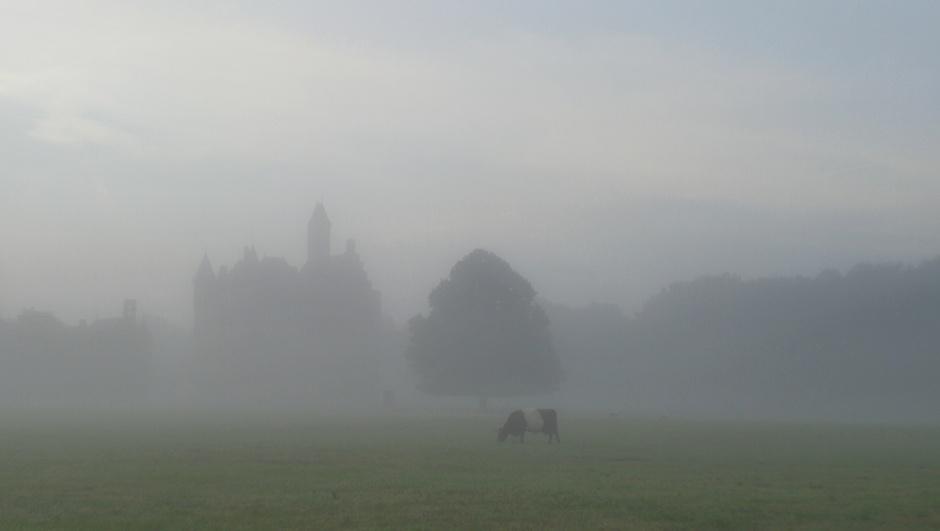 Mist vanmorgen bij kasteel Doornenburg