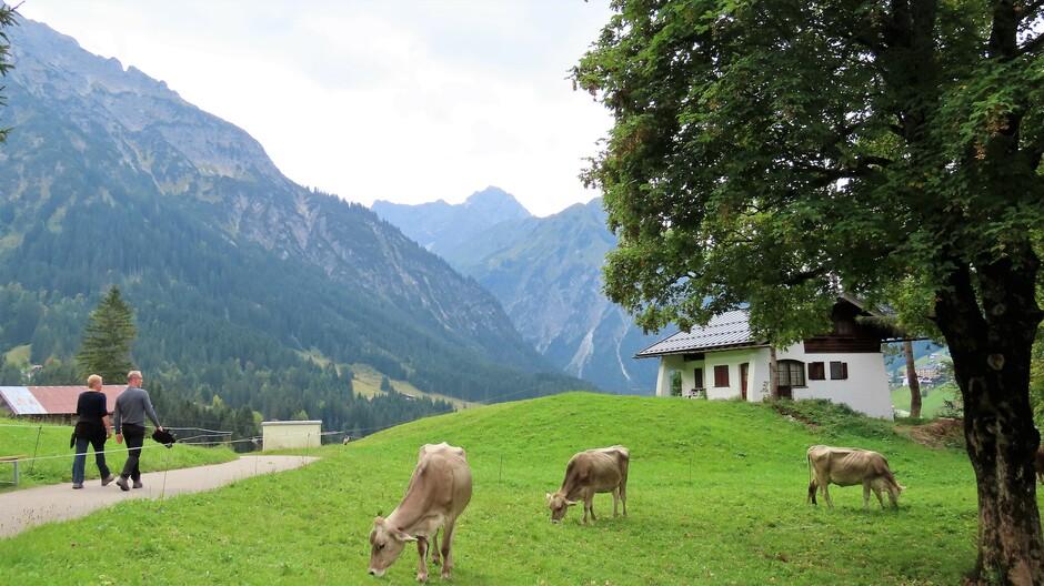 Alpen: nog droog