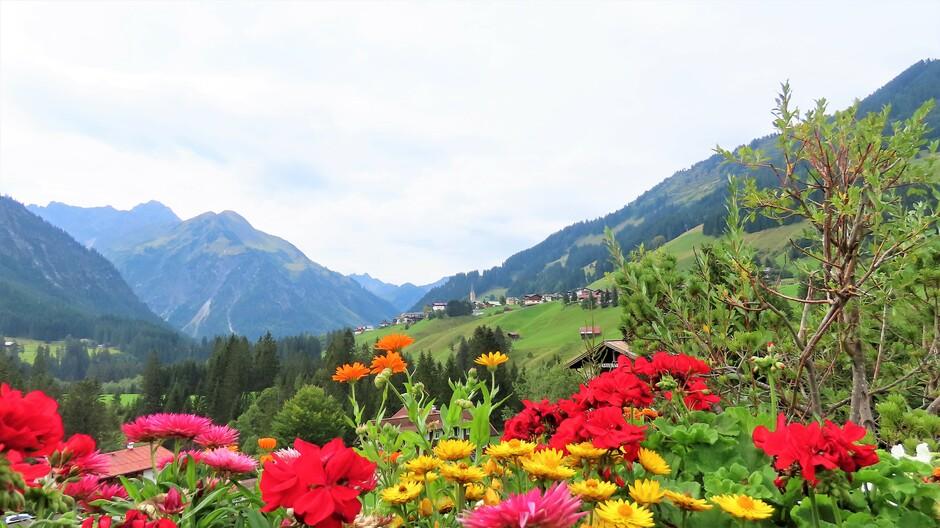 Alpen: morgen nat