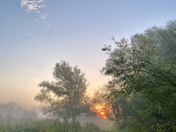 Marston Marshes early morning mist