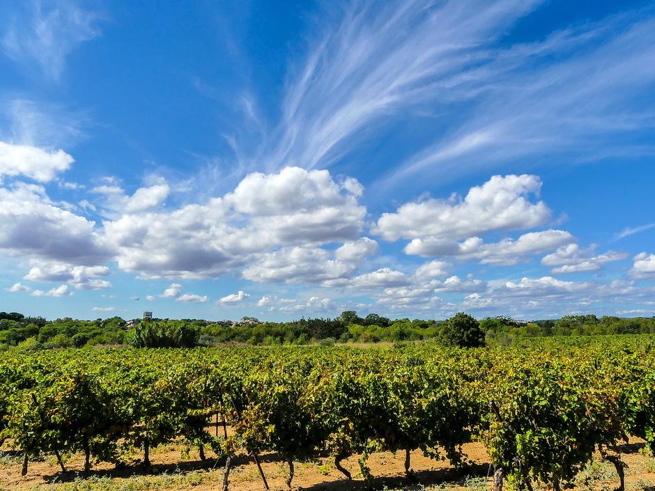 Zonovergoten dag mooie wolken fraaie windveren