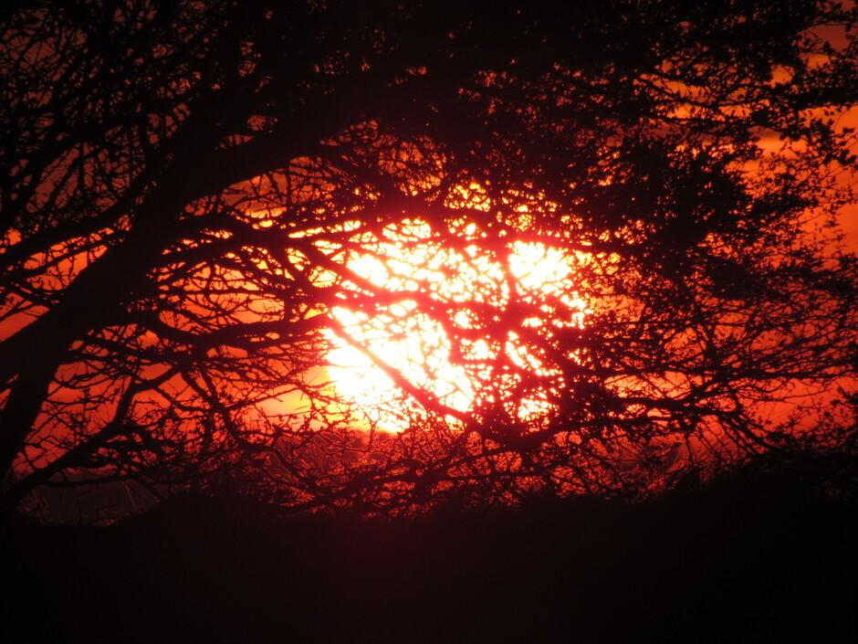 Prachtige rode zonsopkomst