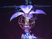 Gorilla Circus at the Out There Festival