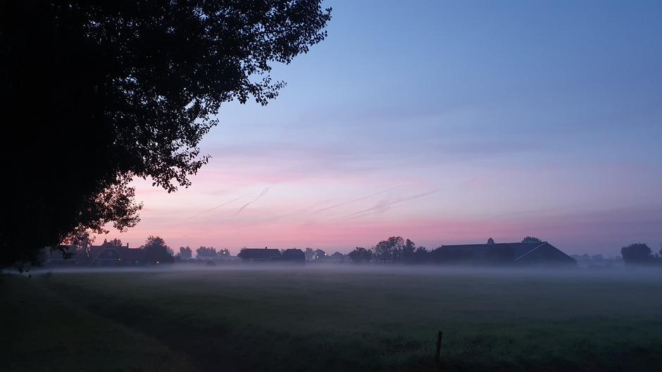 Mist en roze lucht