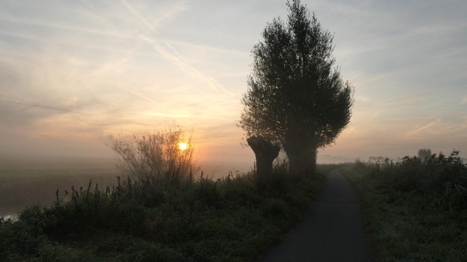 Koele zonsopkomst