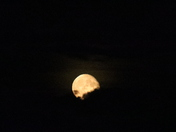Waning Gibbous phase Moon Over The Otter