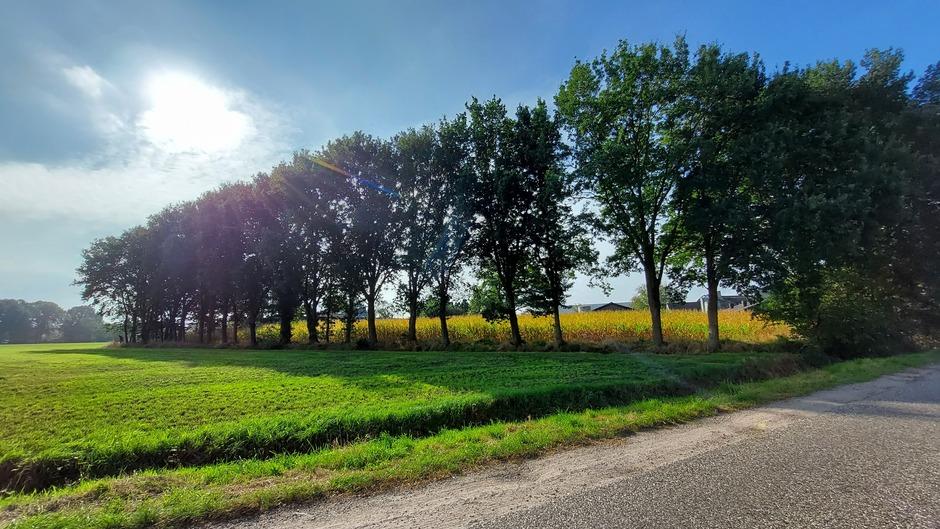 Een zonnige zaterdag in Brabant