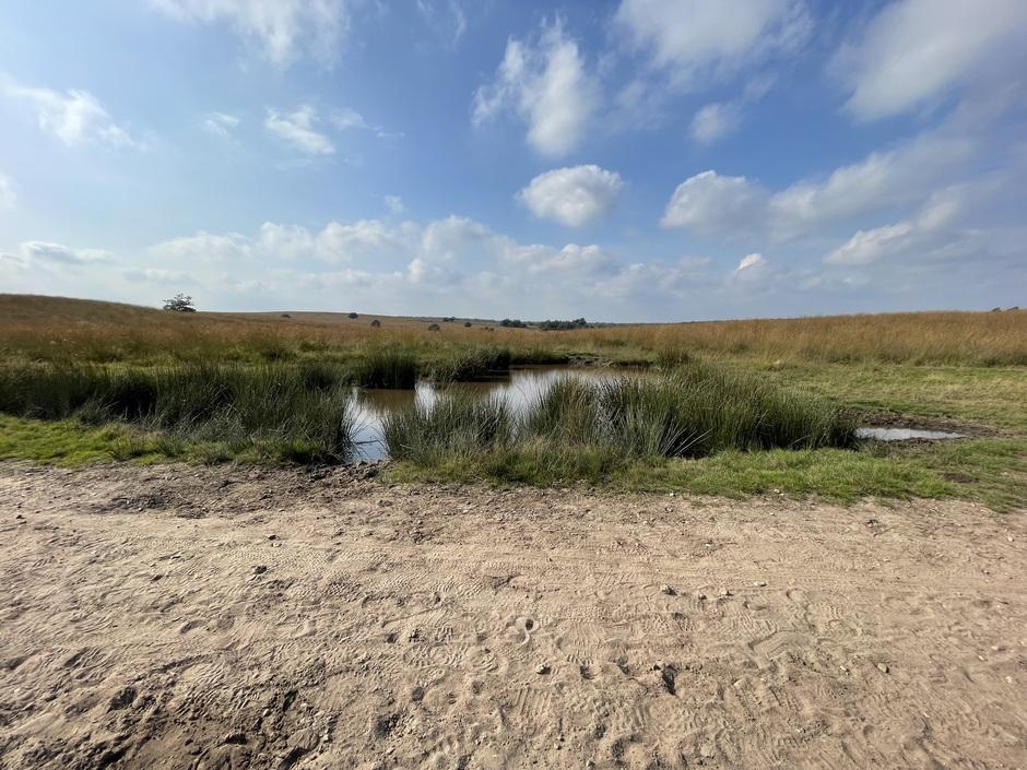 Nationaal Park Veluwezoom