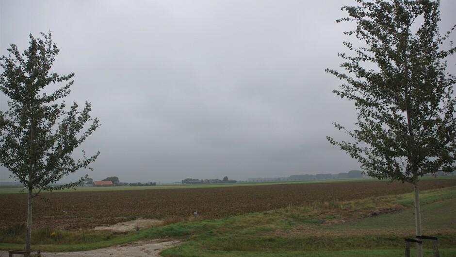 grijs en bewolkt weer iets nevel 16 gr stevige wind in de polder