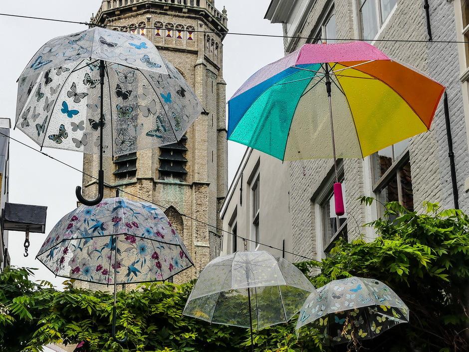 Parapluus voor af en toe een buitje