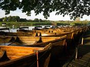 Row boats at Dedham