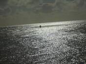 Lone wind surfer at lowestoft