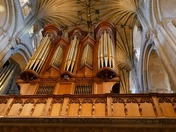 PROJ 52. LOOKING UP.   AT THE ORGAN IN NORWICH CATHEDRAL