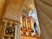 PROJ 52. LOOKING UP.   IN NORWICH CATHEDRAL