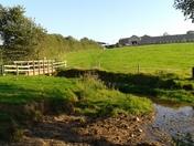 Country scenes around Gore Lane